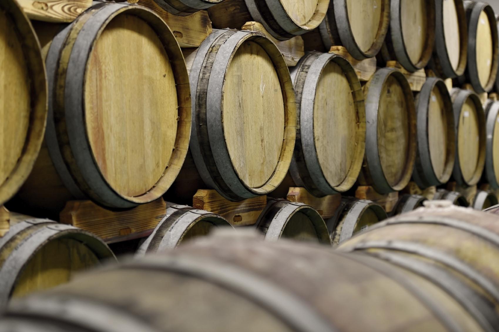 Rioja & Wine